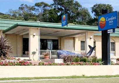 Comfort Inn Albany - Accommodation Port Hedland
