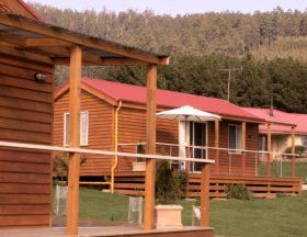 Maydena Country Cabins Accommodation  Alpaca Stud - Accommodation Port Hedland