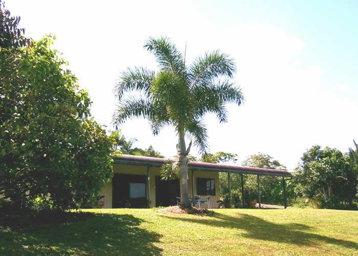 Daintree Mountain View Retreat and Vanilla Beans - Accommodation Port Hedland