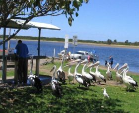 Mountain View Caravan and Mobile Home Village - Accommodation Port Hedland