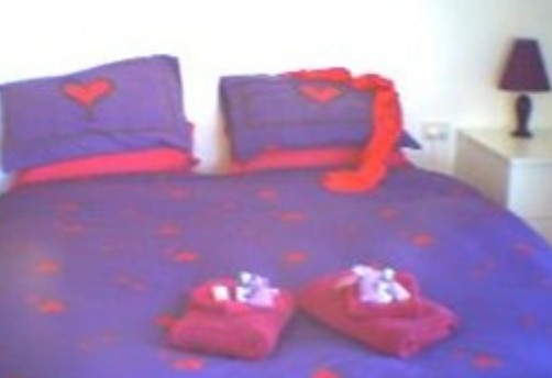 Aloomba Lavender - Accommodation - Accommodation Port Hedland