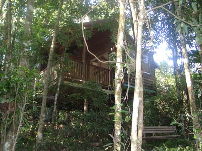 Adjinbilly Rainforest Retreat Cabins - Accommodation Port Hedland