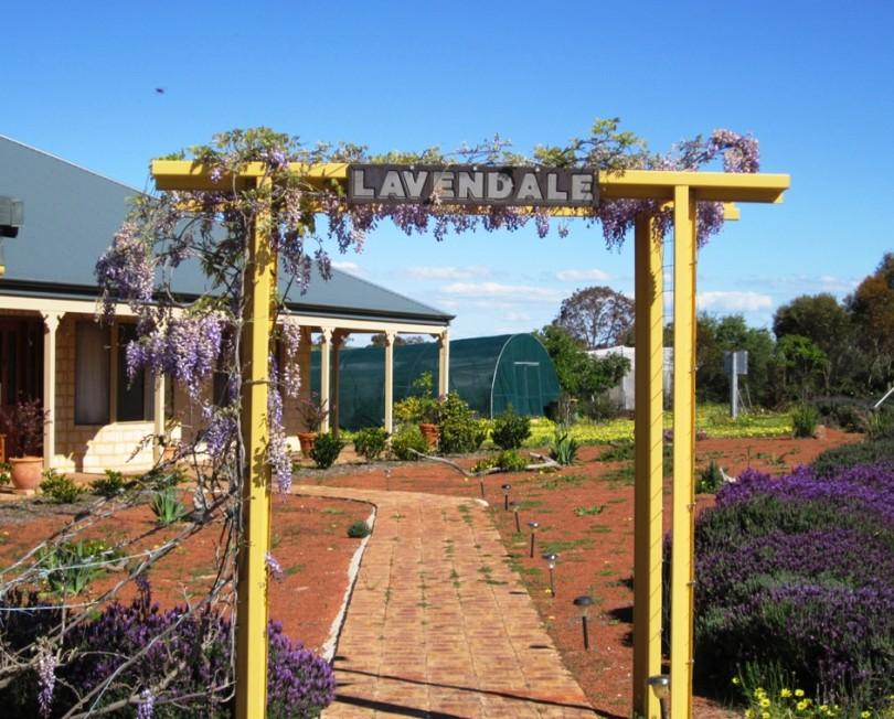 Lavendale Farmstay and Cottages - Accommodation Port Hedland
