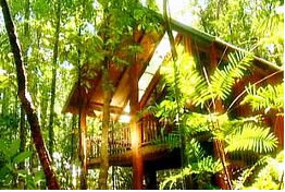 The Canopy Treehouses - Accommodation Port Hedland