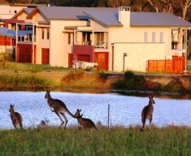 Grand Mercure The Vintage Hunter Valley - Accommodation Port Hedland