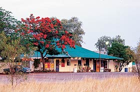 Wauchope Hotel and Roadhouse - Accommodation Port Hedland
