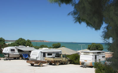 Blue Dolphin Caravan Park and Holiday Village - Accommodation Port Hedland