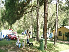 Glasshouse Mountains Holiday Village - Accommodation Port Hedland