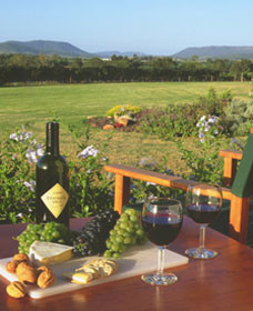 Tranquil Vale Vineyard Cottages - Accommodation Port Hedland