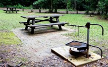 Bellbird campground