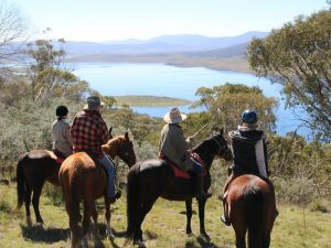 Reynella Homestead and Horseback Rides - Accommodation Port Hedland