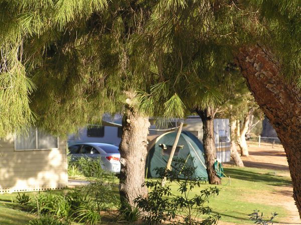 Barmera North Lake Caravan Park - Accommodation Port Hedland