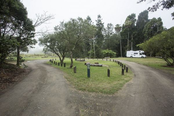 Eungella National Park Camping Ground - Accommodation Port Hedland