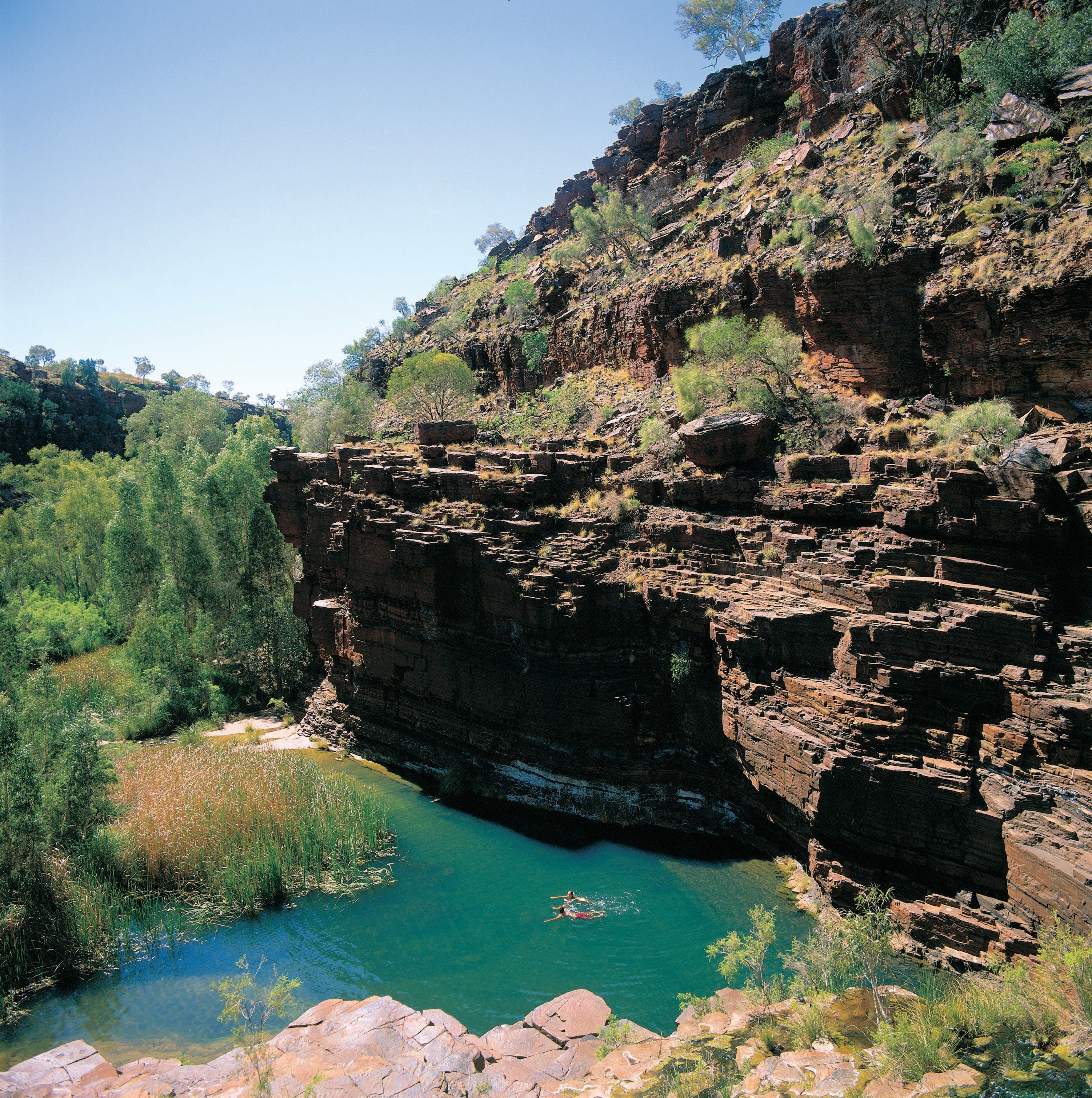 Dales Gorge Camp at Karijini National Park - Accommodation Port Hedland