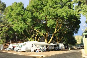 Williamstown Queen Victoria Jubilee Park - Accommodation Port Hedland