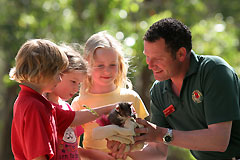 Cleland Wildlife Park - Accommodation Port Hedland