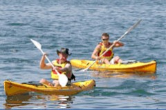 Manly Kayaks - Accommodation Port Hedland