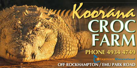 Koorana Saltwater Crocodile Farm - Accommodation Port Hedland