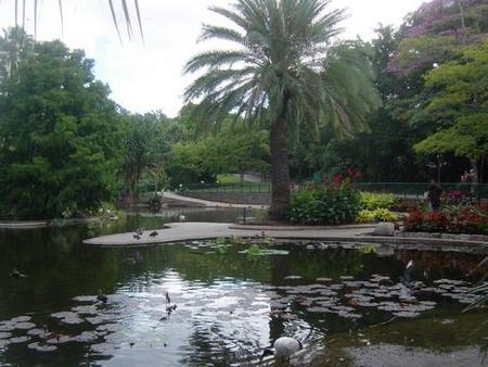 Brisbane City Botanic Gardens - Accommodation Port Hedland