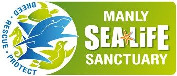Manly SEA LIFE Sanctuary - Accommodation Port Hedland