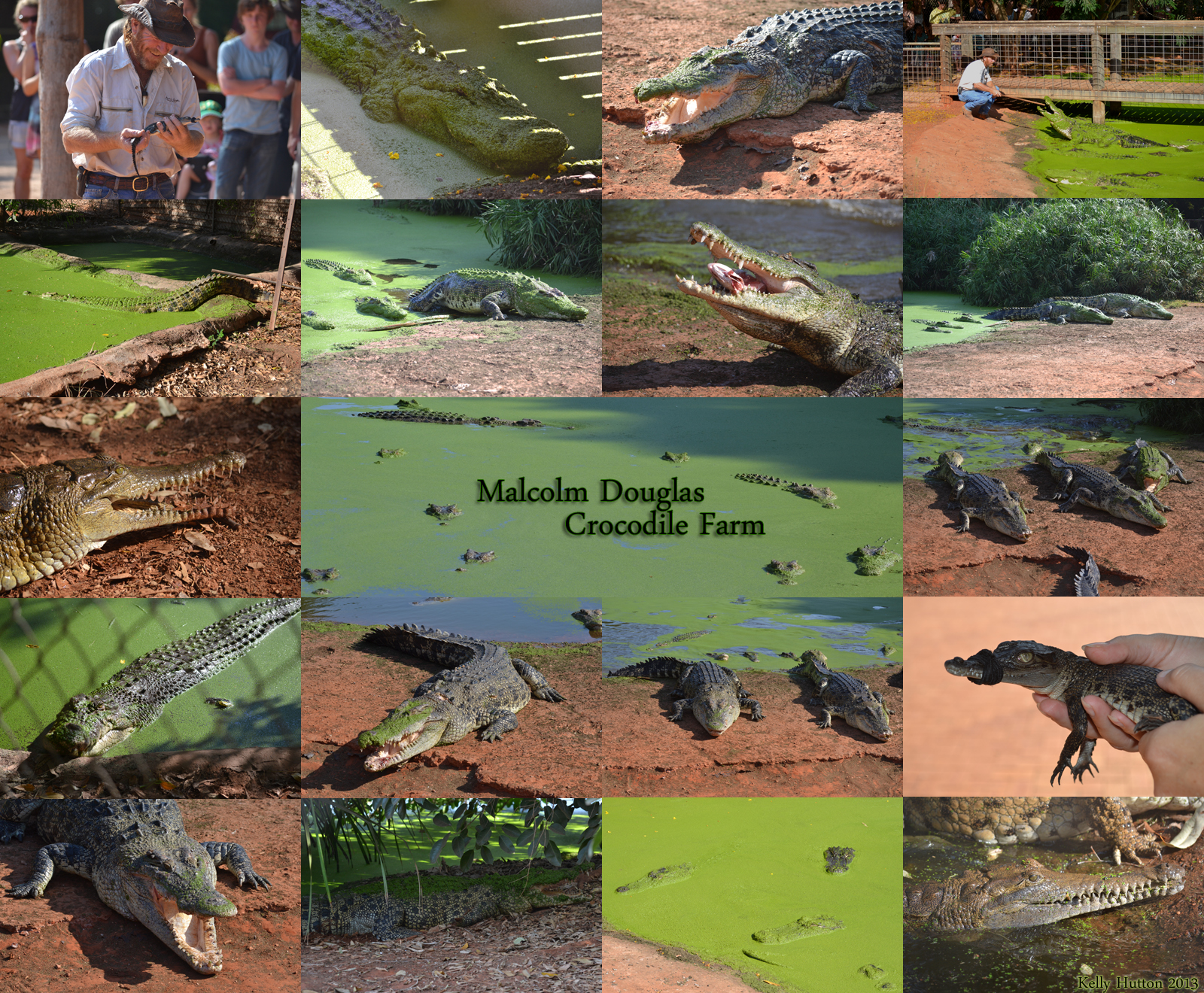 The Malcolm Douglas Crocodile Park - Accommodation Port Hedland