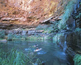 Dales Gorge and Circular Pool - Accommodation Port Hedland