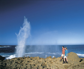 The Blowholes Carnarvon - Accommodation Port Hedland
