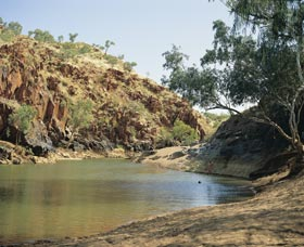 Caroline Pool - Accommodation Port Hedland