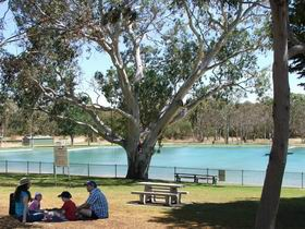 Naracoorte Nature Park and Swimming Lake - Accommodation Port Hedland