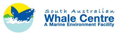 South Australian Whale Centre - Accommodation Port Hedland