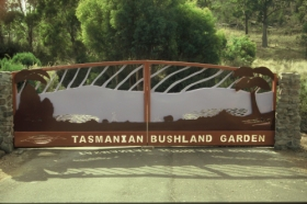 Tasmanian Bushland Garden - Accommodation Port Hedland