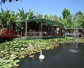 Blue Lotus Water Garden - Accommodation Port Hedland