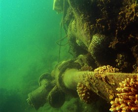 Wreck Diving at Magnetic Island - Accommodation Port Hedland