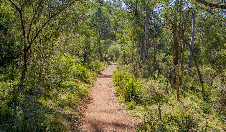 Mares Forest Creek walking track - Accommodation Port Hedland