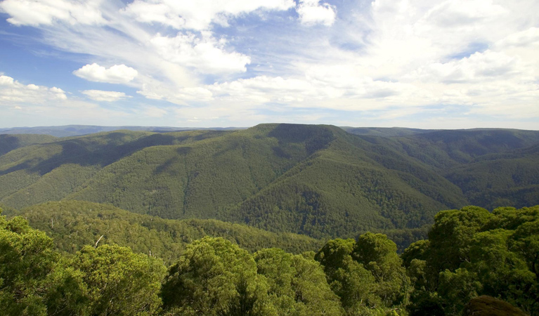 Barrington Tops National Park - Accommodation Port Hedland