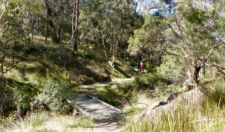 Wollomombi walking track - Accommodation Port Hedland