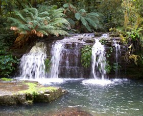Barrington Tops National Park Walks - Accommodation Port Hedland