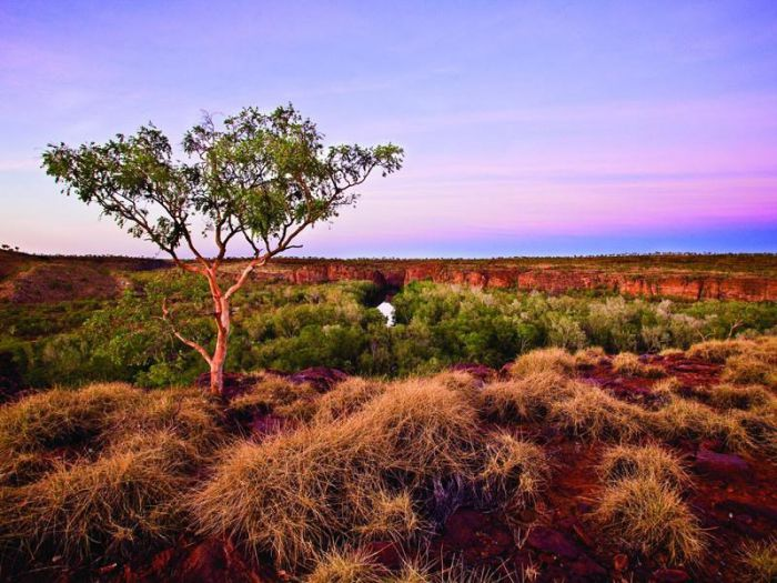 Island Stack Boodjamulla Lawn Hill National Park - Accommodation Port Hedland