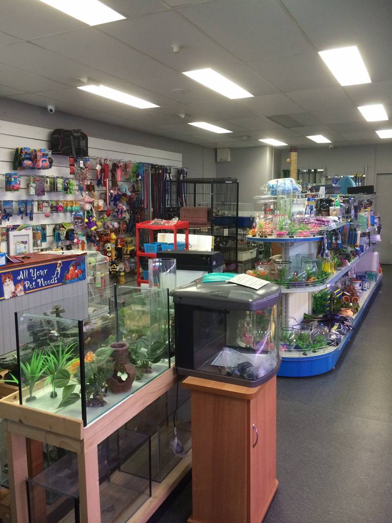 Nambour Pet Shop - Accommodation Port Hedland