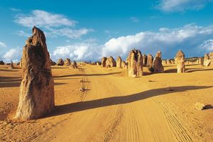 Pinnacles Desert Koalas and Sandboarding 4WD Day Tour from Perth - Accommodation Port Hedland