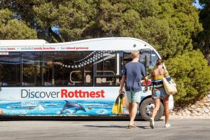 Rottnest Island Tour from Perth or Fremantle including Bus Tour - Accommodation Port Hedland