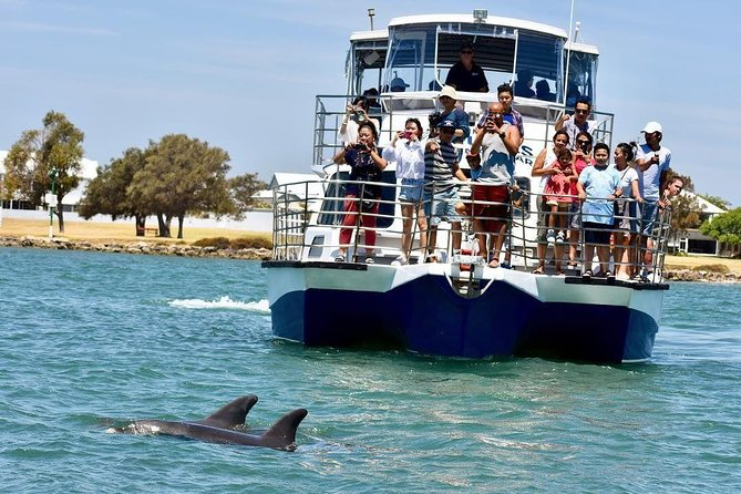 Mandurah Dolphin and Scenic Canal Cruise - Accommodation Port Hedland