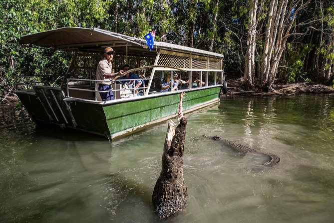 Hartley's Crocodile Adventures Day Trip from Palm Cove - Accommodation Port Hedland