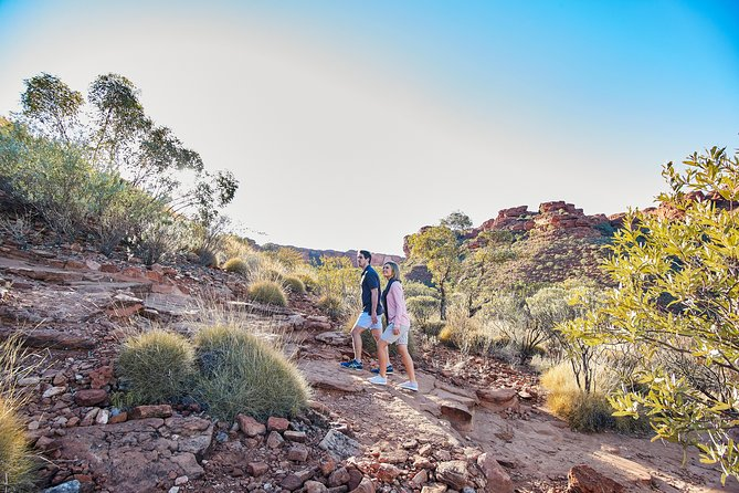 Kings Canyon Guided Rim Walk - Accommodation Port Hedland