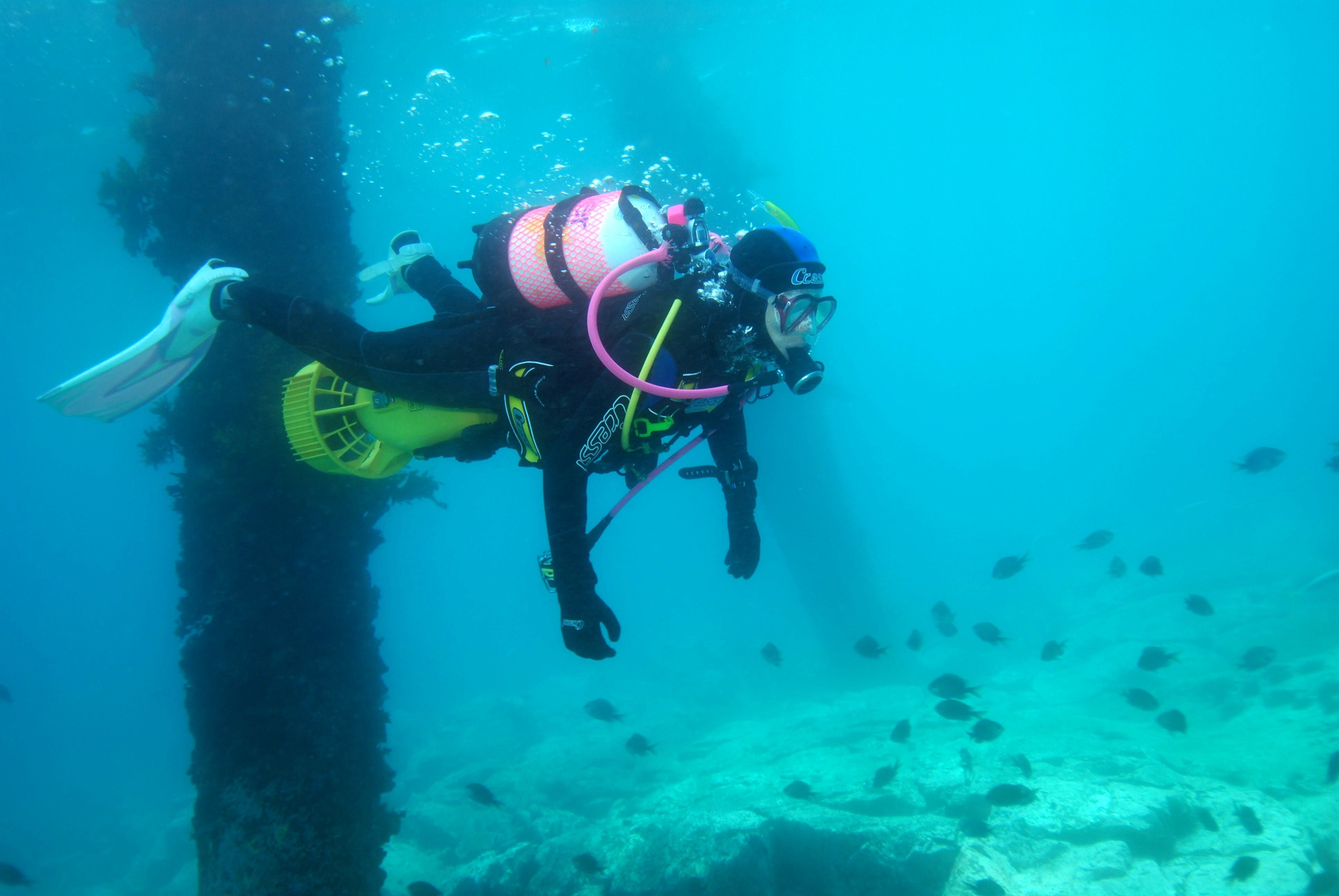 Shellharbour Scuba  and Photography Centre - Accommodation Port Hedland