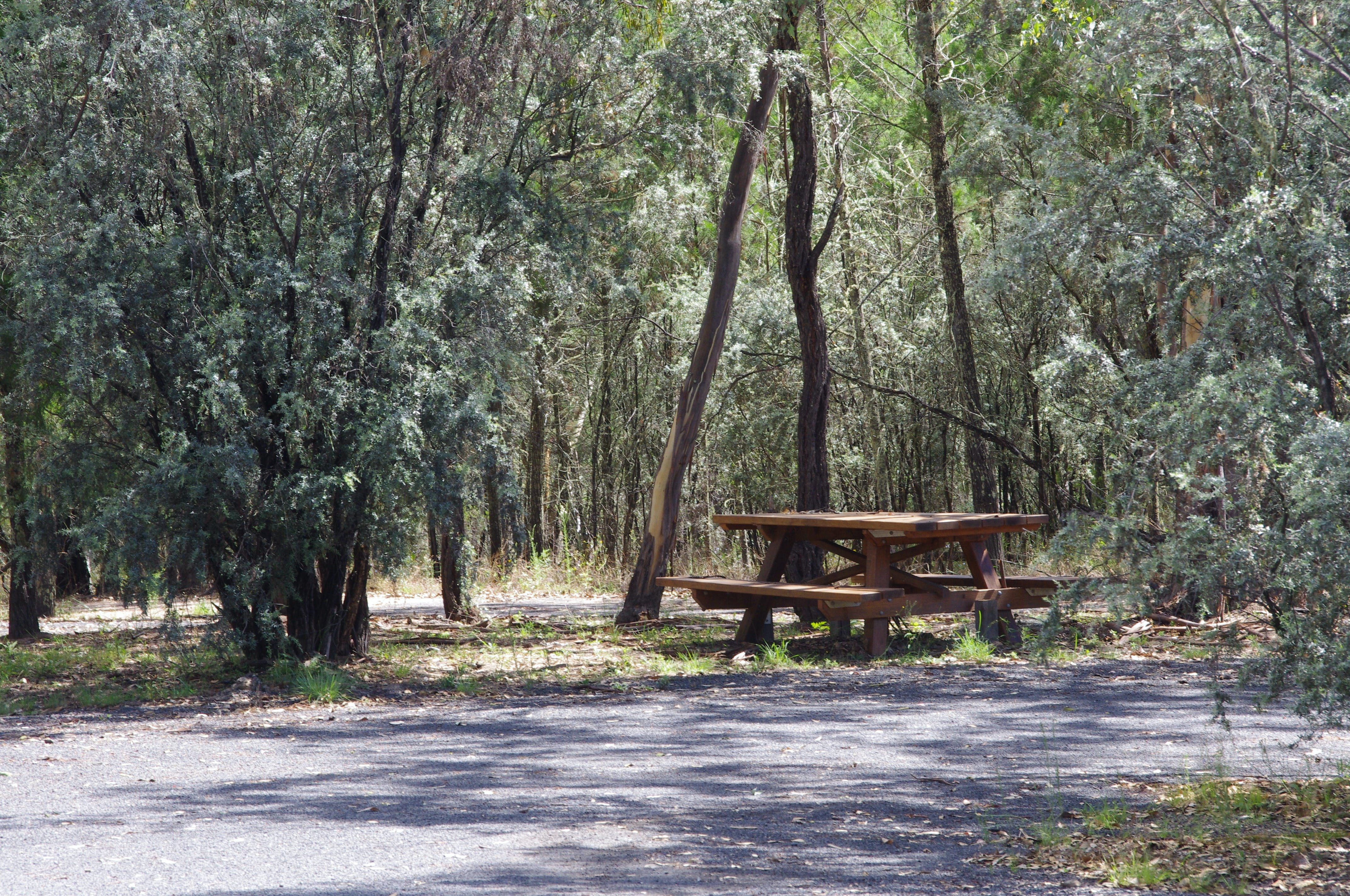 Goonoowigall State Conservation Area - Accommodation Port Hedland
