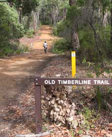 Old Timberline and Sidings Rail Trails - Accommodation Port Hedland
