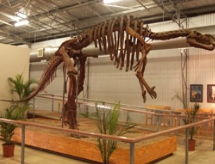 Australia's Dinosaur Trail - Accommodation Port Hedland