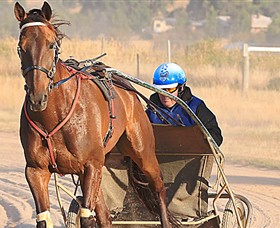 Ballarat  District Trotting Club - Accommodation Port Hedland