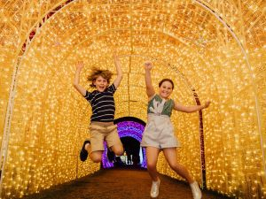 Christmas Lights Spectacular New Year's Eve at Hunter Valley Gardens - Accommodation Port Hedland